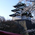 弘前城・桜2009