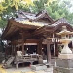 田無神社2015秋-1