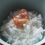 海老味噌3