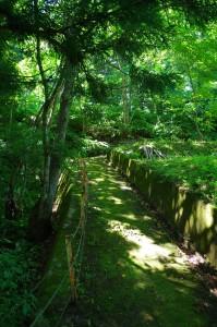 岩木山神社遊歩道2018-1